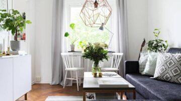 Cómo decorar la entrada de la casa con plantas